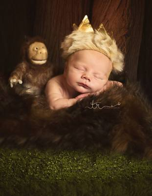 Where the Wild Things Are crown and stuffy